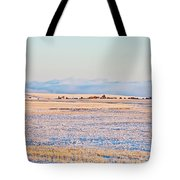 Frosty Morning 2 Tote Bag