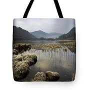 Frosty Winters Morning, Lower Lake Tote Bag