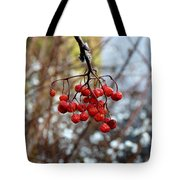 Frozen Mountain Ash Berries Tote Bag