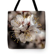Fruit Bouquet Tote Bag