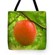Fruit Plums Red Tote Bag
