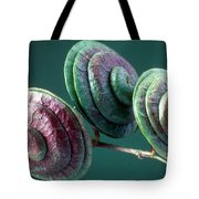 Fruits Of Wild Lucerne Tote Bag