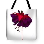Fuchsia On White Tote Bag by Dawn OConnor