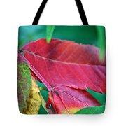 Full Spectrum Sumac Tote Bag