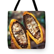 Fungal Infection Of Cacao Tote Bag by Science Source