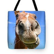 Funny Brown Horse Face Tote Bag by Jennie Marie Schell
