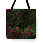 Fuschia Tree Tote Bag