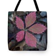 Fushia Leaf Tote Bag