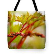 Future Bleeding Hearts Tote Bag
