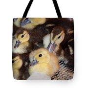 Fuzzy Ducklings Tote Bag