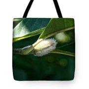 Fuzzy Magnolia Tote Bag