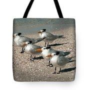 Gaggle Of Gulls Tote Bag