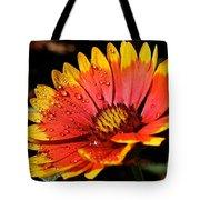 Gaillardia Flower Tote Bag