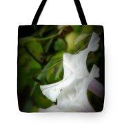 Gaily Tote Bag