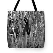 Gallinule In The Grass Tote Bag