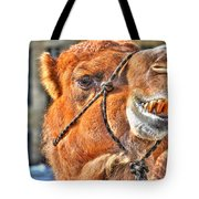 Gangsta Grillin This Camels Chillin Tote Bag