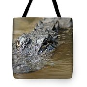 Gator 3 Tote Bag