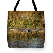 Gator Break Tote Bag