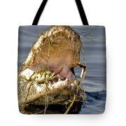 Gator Grabs Lunch Tote Bag