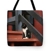 Gatto Bianco Gatto Nero Tote Bag