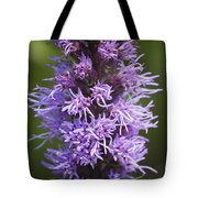 Gayfeather Squared Tote Bag