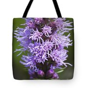 Gayfeather Tote Bag