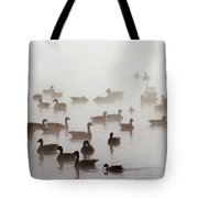 Geese And Ducks In A Placid Lake Tote Bag