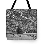 Geese By The River Tote Bag by Bill Cannon