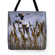 Geese Coming In For A Landing Tote Bag