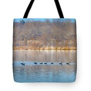 Geese In The Schuylkill River Tote Bag