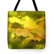Gentle Glow Tote Bag