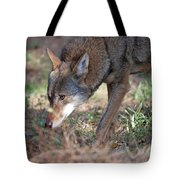 Gentle Wolf Tote Bag
