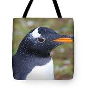 Gentoo Penguin Head Shot Tote Bag