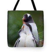 Gentoo Penguin Pygoscelis Papua Hungry Tote Bag by Suzi Eszterhas