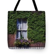 Georgian Doors, Fitzwilliam Square Tote Bag