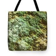 Geothermally Active Area Tote Bag