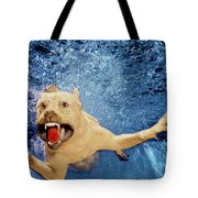 Getting Closer Tote Bag by Jill Reger