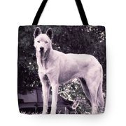 Ghost The Wolf Tote Bag
