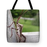 Giant Assassin Bug Tote Bag