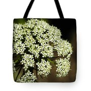 Giant Buckwheat Flower Tote Bag