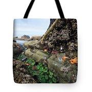 Giant Green Sea Anemone Anthopleura Tote Bag