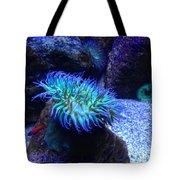 Giant Green Sea Anemone Tote Bag