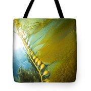 Giant Kelp, Catalina Island, California Tote Bag