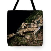Giant Leaf Tail Gecko Tote Bag