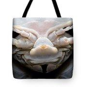 Giant Marine Isopod Tote Bag