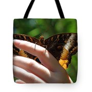 Giant Owl Butterfly In Hand Tote Bag