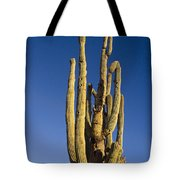 Giant Saguaro Cactus Portrait With Blue Sky Tote Bag
