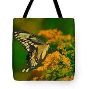Giant Swallowtail On Goldenrod Tote Bag