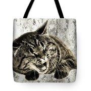 Giggle Kitty  Tote Bag