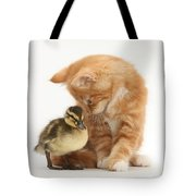 Ginger Kitten And Mallard Duckling Tote Bag by Mark Taylor